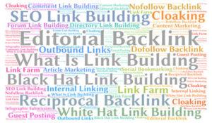 Link Building, Google Penguin 4 Updates, Cole Patrick Digital Marketing, PageOne Power